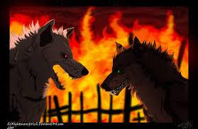 dog battle