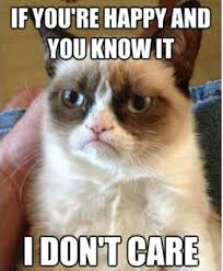 Grumpy Cat - happy I don't care