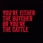butcher of the cattle