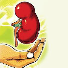 dead kidney