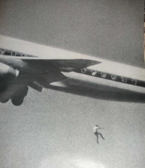 plane death